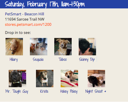 Adoption Event At Petsmart Beacon Hill On February 17th Event How To Raise Money Adoption