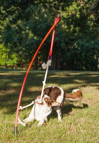 Tether Tug Dog Backyard Dog Playground Interactive Dog Toys