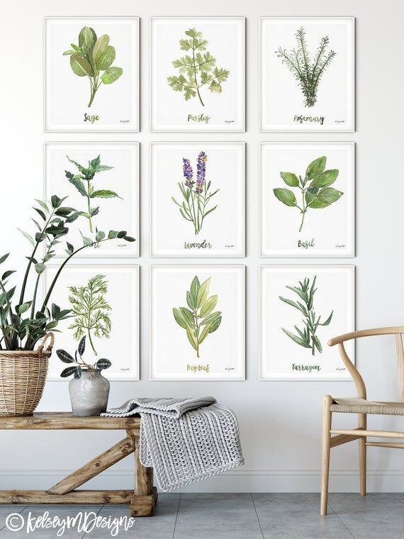 Set Of 9 Herbs And Spices Kitchen Prints Herb Kitchen Art