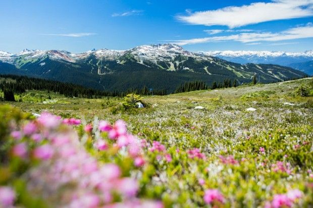15 late-summer adventures in the Pacific Northwest