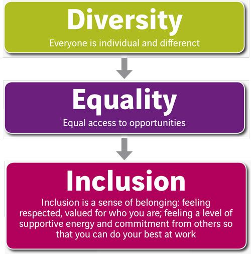 what is meant by diversity equality and inclusion