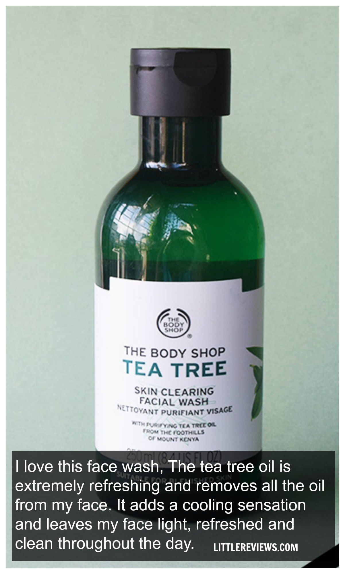The Body Shop Tea Tree Skin Clearing Facial Wash Review Body Shop Tea Tree The Body Shop Facial Wash