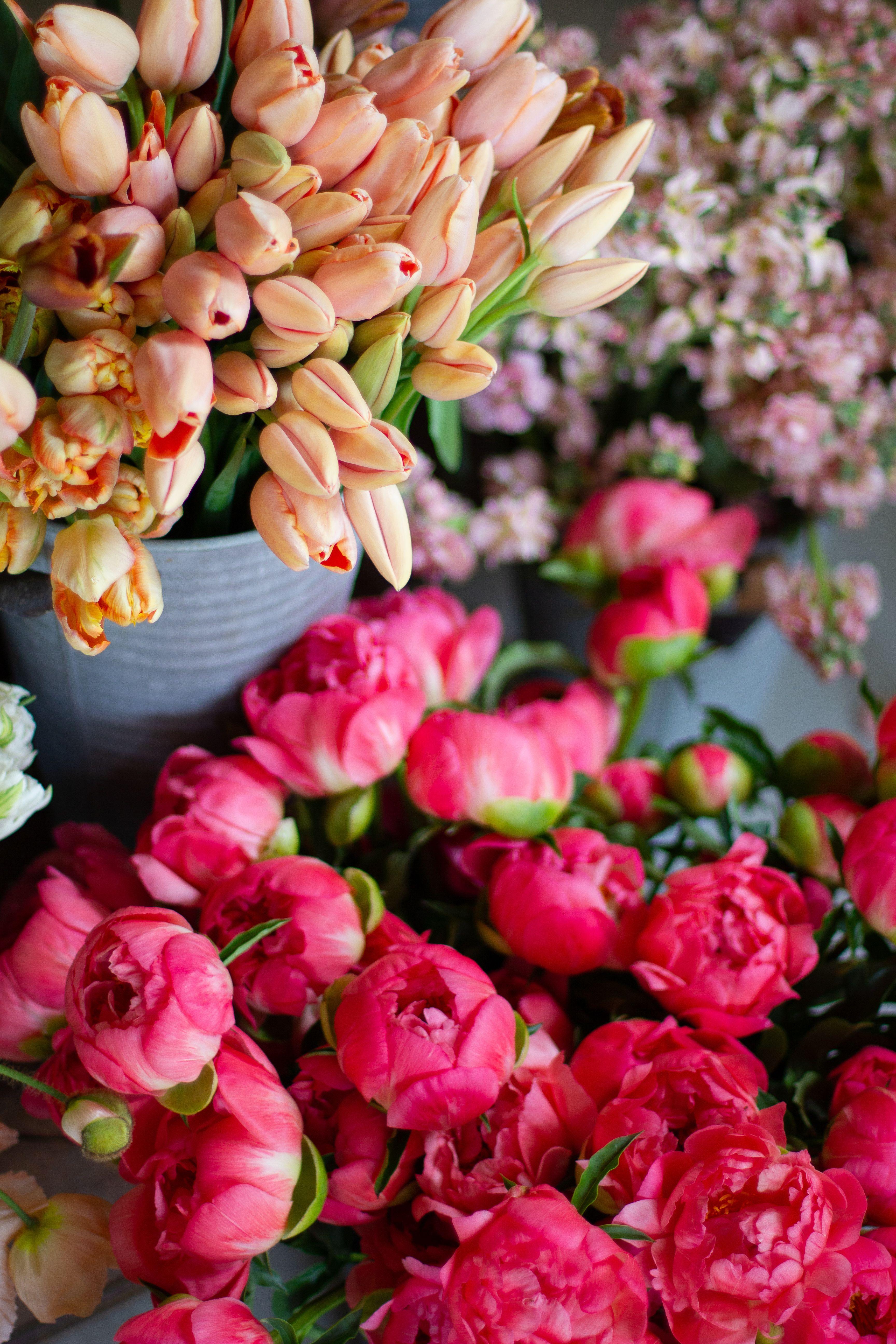Love 'n Fresh Flowers, a flower farm located in