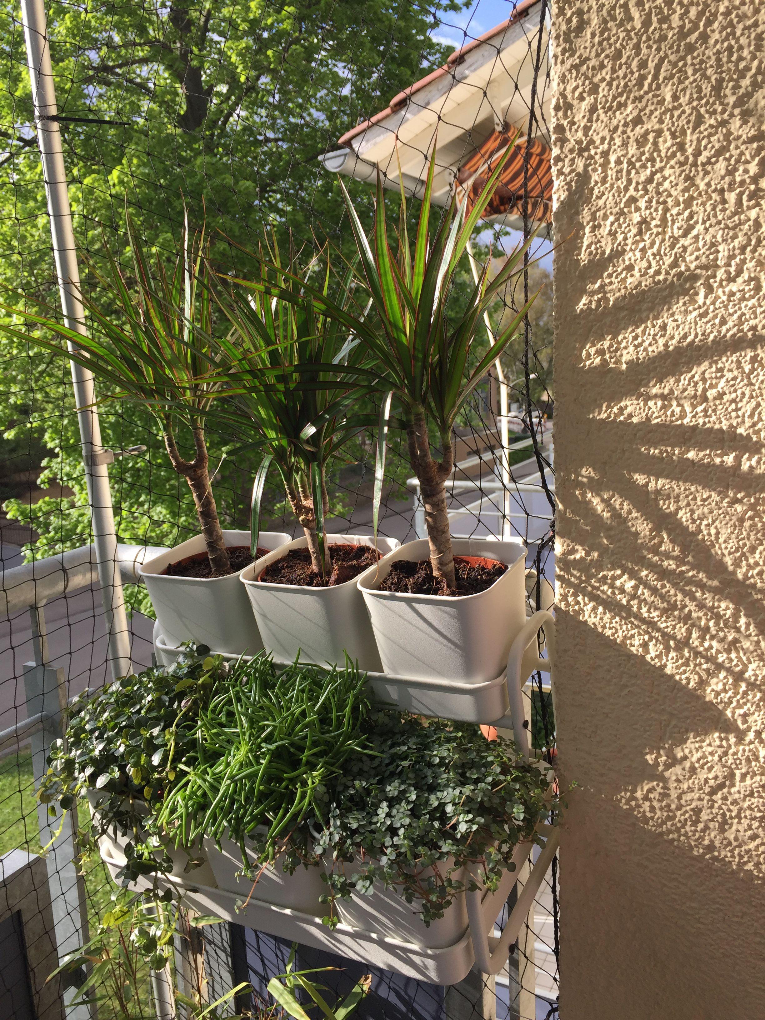 socker ikea blumentopf mit halter, drinnen/draußen, weiß, 10.5 cm