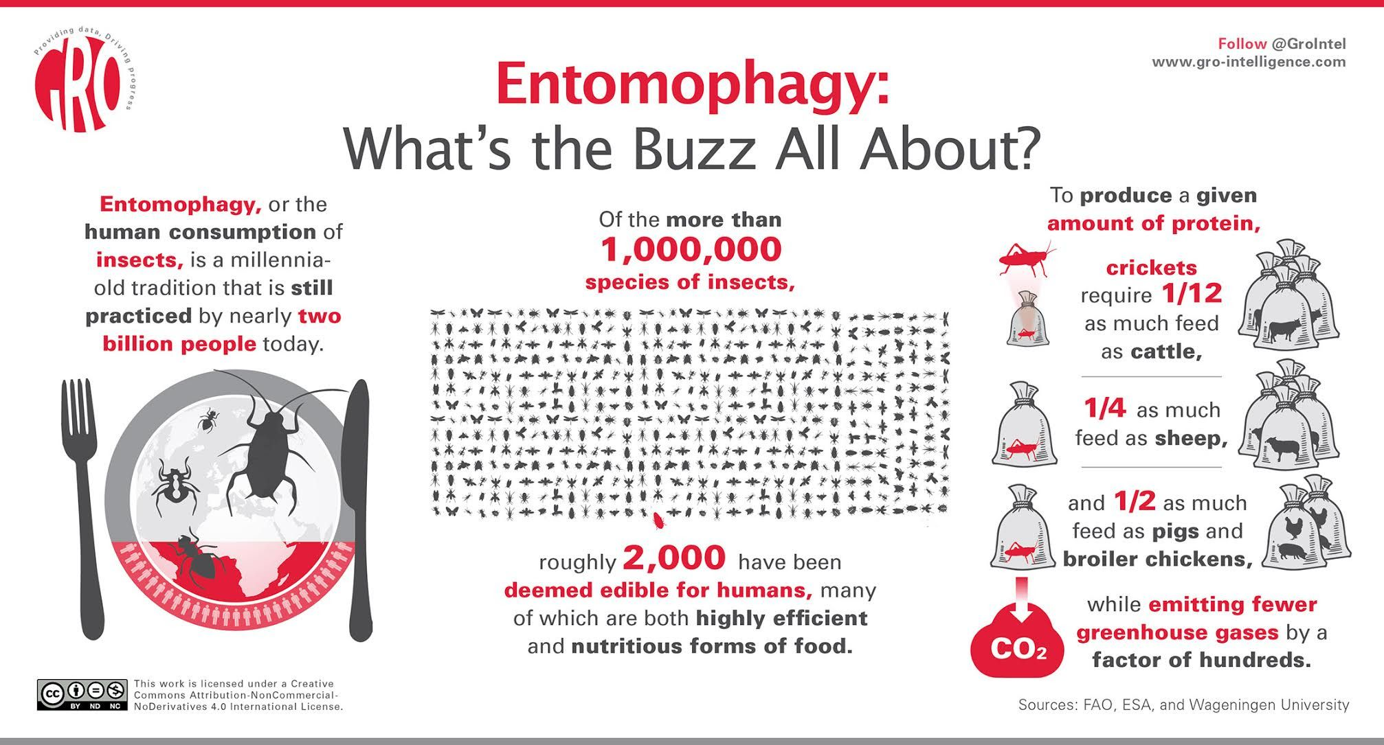 Entomophagy: What's the Buzz All About? - Gro Intelligence