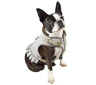 Martha Stewart Fashionable Tweed Dog Harness Dog Harness Cute