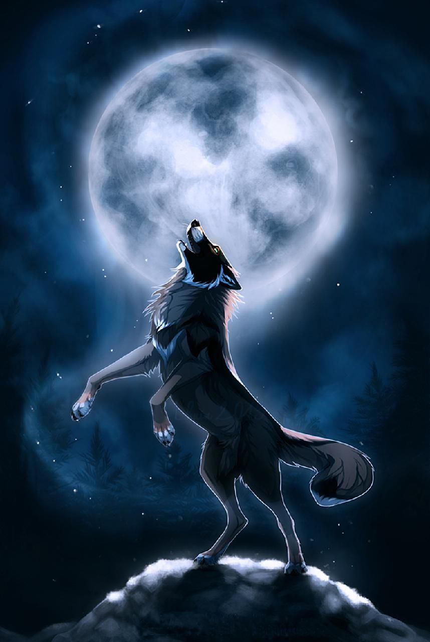 Photo of Download Wolf Wallpaper by florin_1001 – 8c – Free on ZEDGE™ now. Browse milli…
