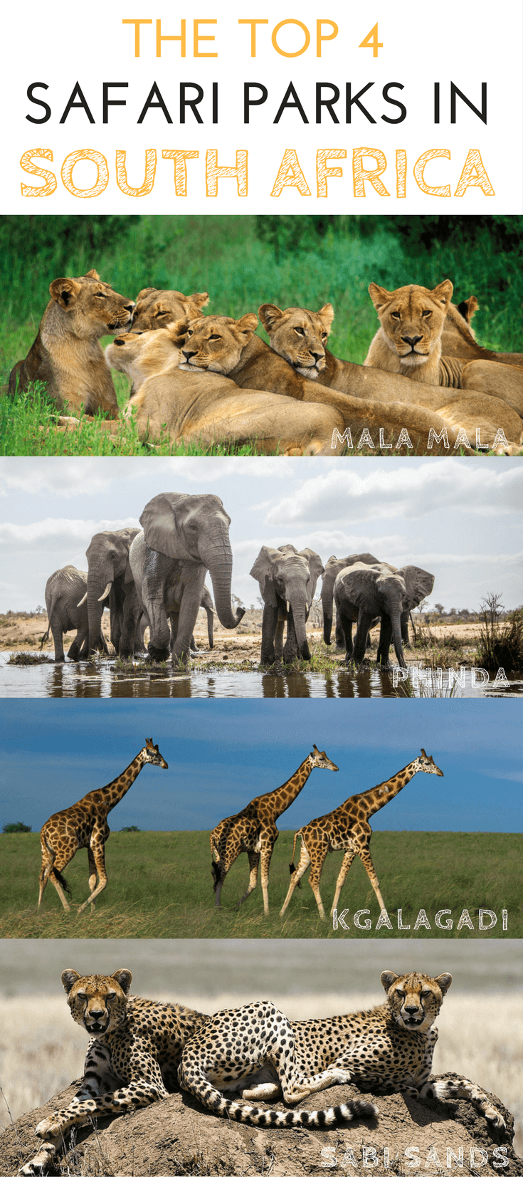 Four South African Parks In The Top Best Safari Parks Of Africa - 10 best safaris in africa
