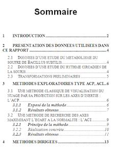 Rapport De Stage Sommaire Sommaire Rapport De Stage 3eme