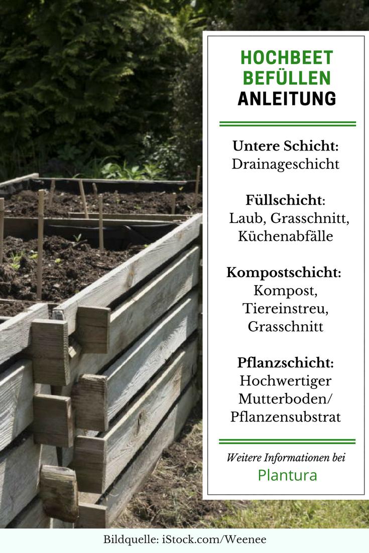 Hochbeet Befullen Anleitung Expertentipps Gartenblogs