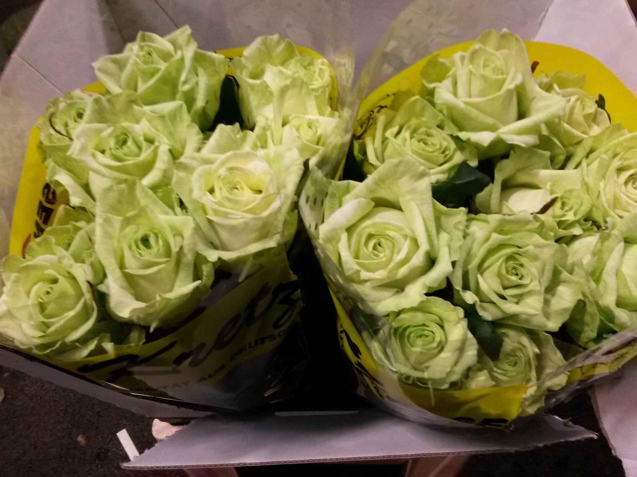 #Rosa #Rose #GlobalNaomi: Available at www.barendsen.nl
