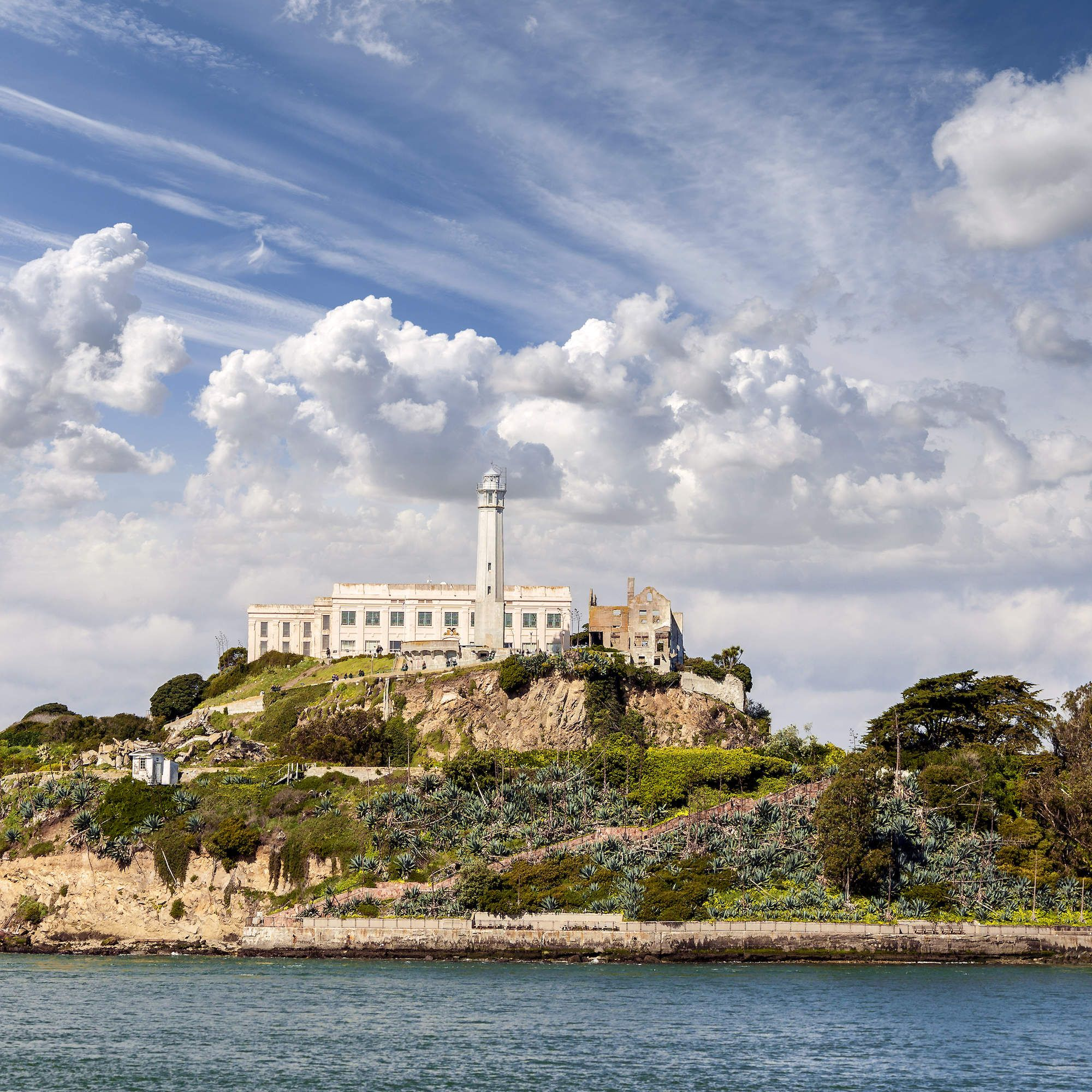 Actually Cool Things to Do in San Francisco Right Now   Day trips, Alcatraz tour, Road trip ...
