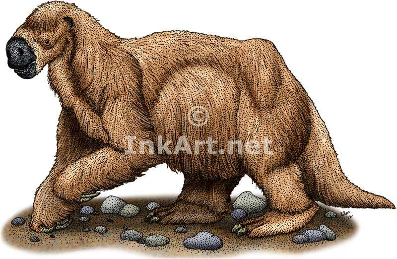 full color illstration of a jeffersons ground sloth megalonyx jeffersonii