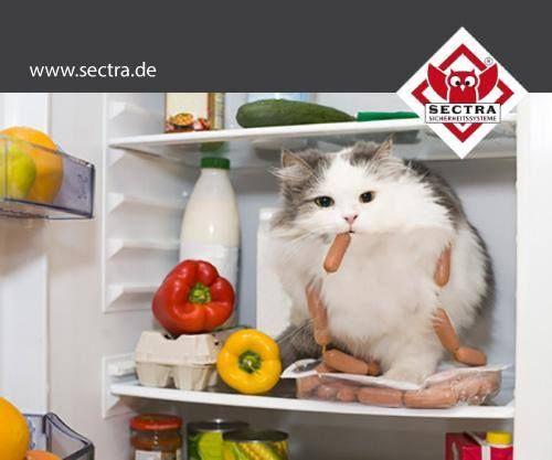 Sectra 3.2 Noch mehr Sicherheit! Es wird Alarm geschlagen, bevor der Täter ins Objekt eingedrungen ist. www.sectra.de