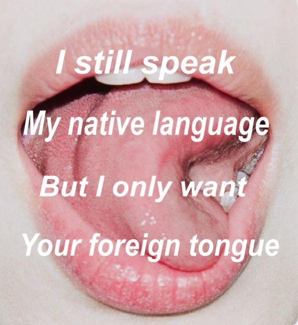 An Immigrant by Jon Bellion Edit by: @fayz019 #jonbellion #animmigrant #jonbellionlyrics #animmigrantlyrics #lyrics #songs