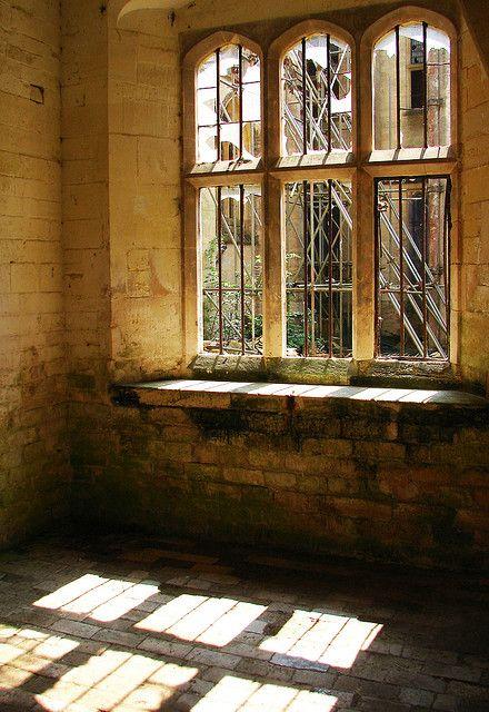Through Gothic Windows Woodchester Mansion