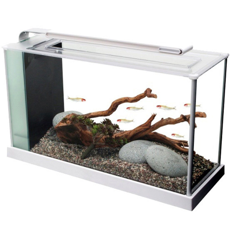 Fluval Spec V Aquarium Kit In White White 5 Gallon Freshwater Aquarium Kit That Includes Nearly Everything You Need To G Aquarium Kit Nano Aquarium Aquarium