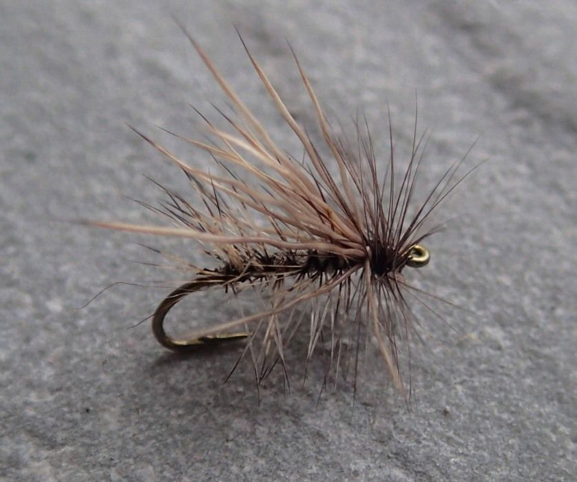 fly fishing in microcosm