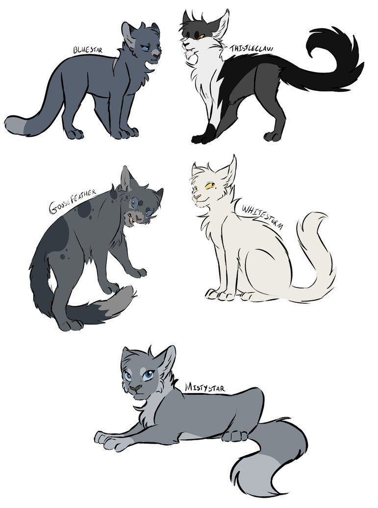 Warriors Designs 3 By Tusofsky Warriorcat With Images Warrior