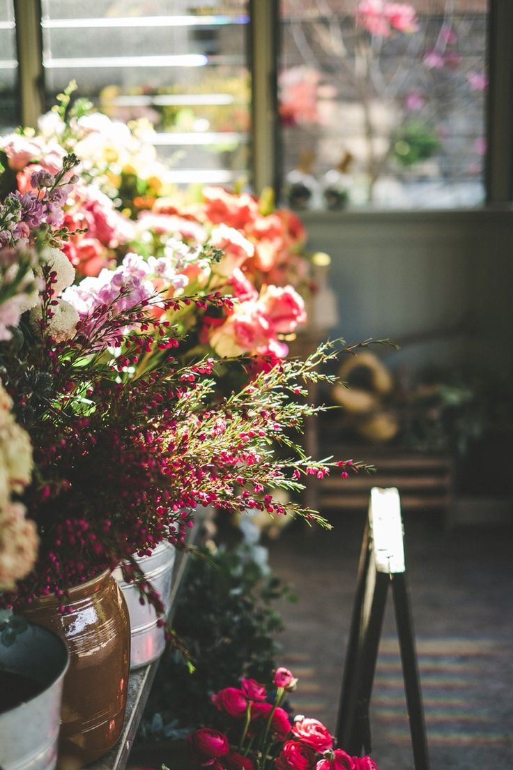Flower Shop F L O R A L Pinterest Flower Shops Flower And
