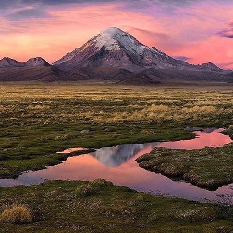 Sajama National Park Bolivia Travel In Bolivia Travel Guide Top Things To Do In Bolivia Tourism Places Bolivia Travel South America Travel National Parks