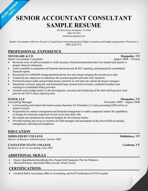 Senior Accountant Consultant Accountant Resume Sample Resume