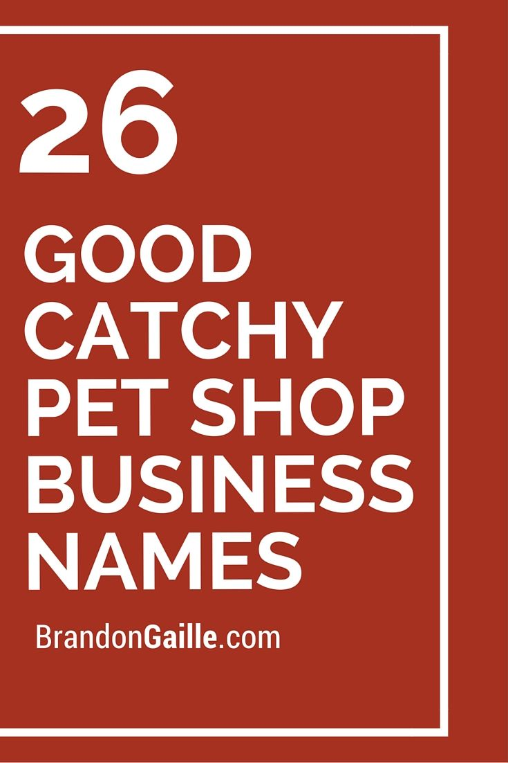 401 Good Catchy Pet Shop Business Names Shop Name Ideas Store Names Ideas Pet Shop