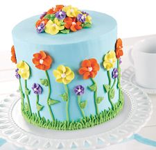 Michaels Cake Decorating Class Sign Up Stunning Wilton Cake Decorating I Took The Classes Years Agoi Guess I Inspiration