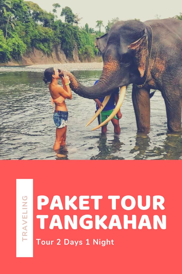 Highlights Paket Tour Tangkahan Pantai Kupu Kupu Hutan