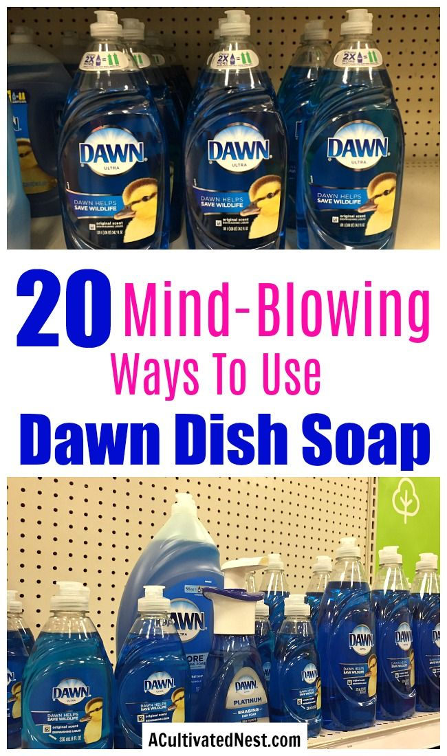 20 Mind Blowing Wasys To Use Dawn Dish Soap Dawn can be used for much more than just washing dishes From cleaning to pet care to beauty Dawn is very versatile Check out t...
