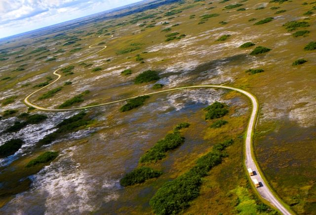 The Shark Valley Tram Tour In Everglades National Park