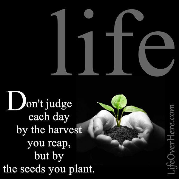 Affirmation · Planting Seeds