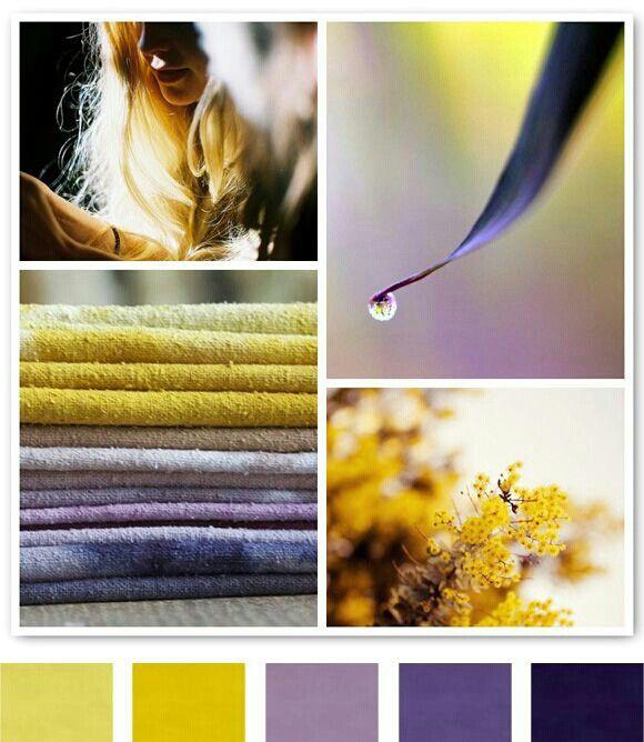 Yellow Ochre Lavender Purple Colour Palette