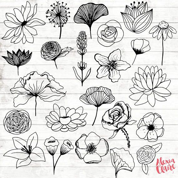 Flowers Clipart - 23 Hand Drawn Floral Cliparts ...