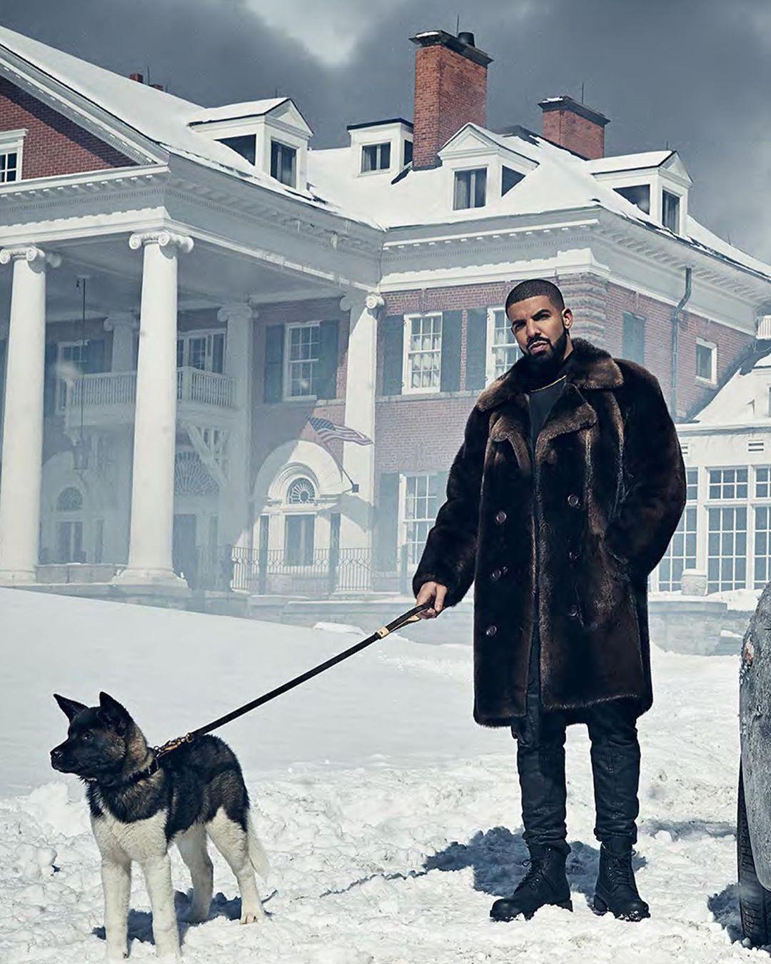 Internationaldogday Caitcronenber Drake Wallpapers Iphone 6 Wallpaper Tumblr Drake