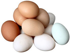 Download Eggs Png Images Background Png Free Png Images Eggs Free Png Png Images