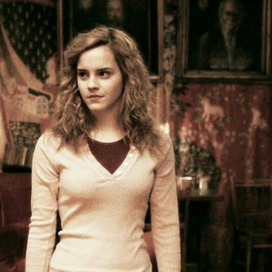 Hermine Im Sechsten Jahr Harry Potter Characters Harry James Potter Harry Potter Film