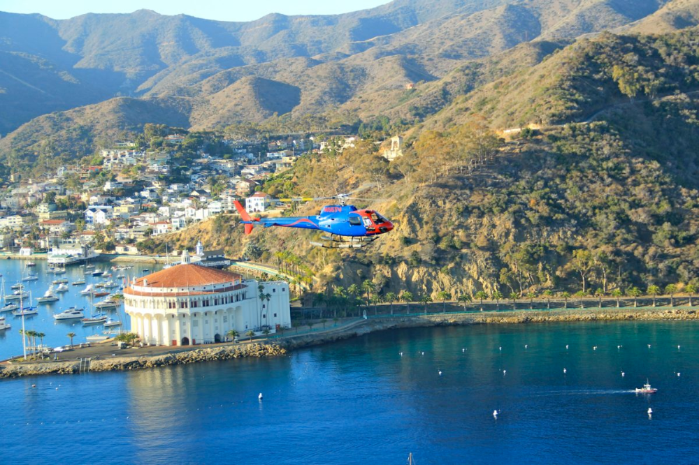 A Catalina Travel Advisor Can Help Plan Your Getaway In 2020 Catalina Island Island Travel Trip Advisor