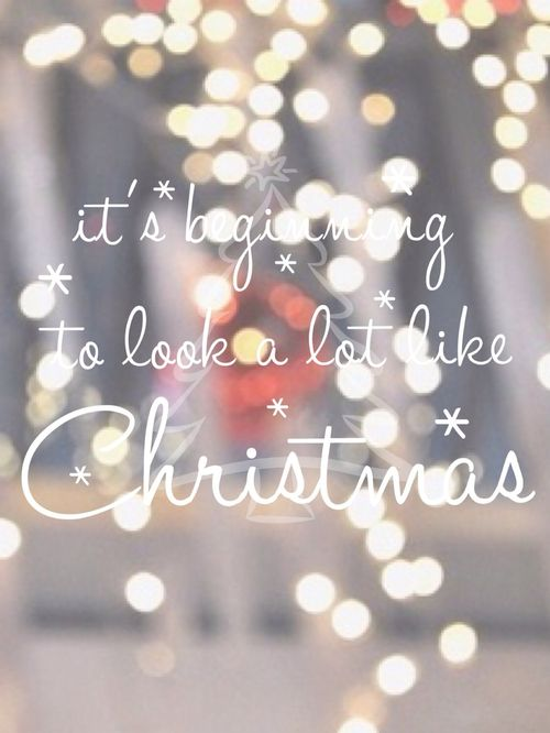 ❅It's the Most Wonderful Time of the Year❅