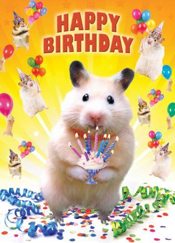 Tracks Publishing Ltd T 01480 435 562 F 01480 450 599 Happy First Birthday Happy Birthday Greetings Birthday Cheers