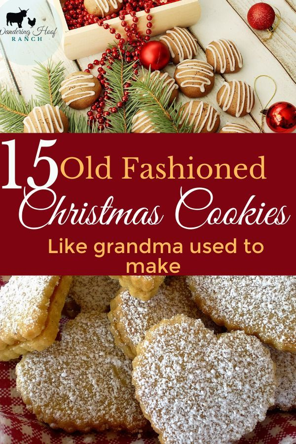 15 BEST Old Fashioned Cookie Recipes - Wandering Hoof Ranch