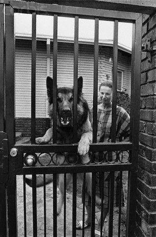 Woman With Her German Shepherd 1984 From ICPs Apartheid Exhibit Dog Years