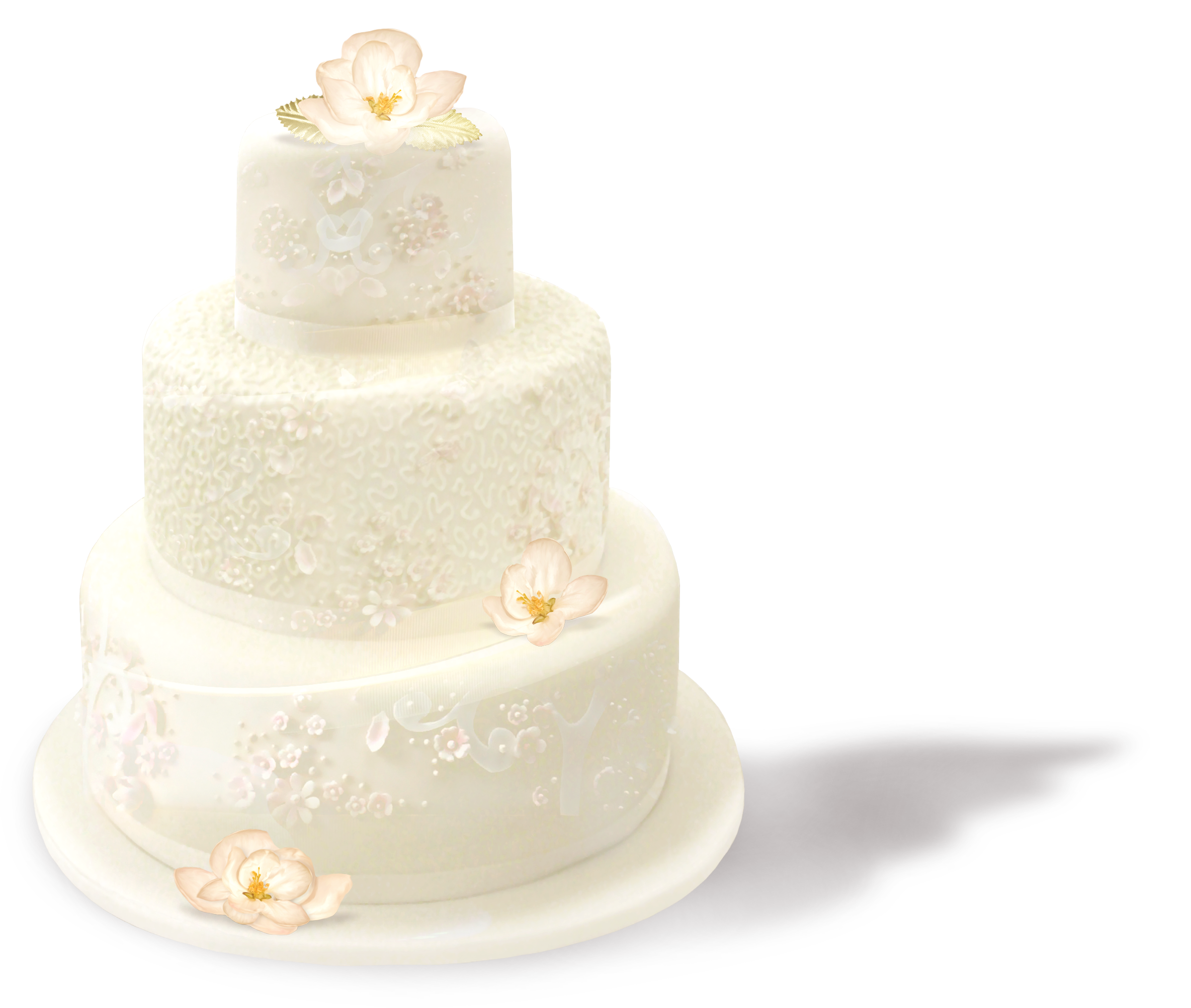 Wedding Cakes Png Google Zoeken Cake Wedding Cakes Vanilla Cake