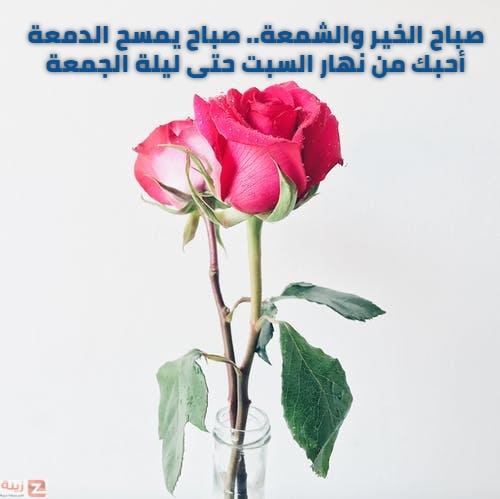 صور صباح الحب والاشتياق صباح الحب والشوق صباح الحب حبيبتي Zina Blog Glass Vase Plants Vase