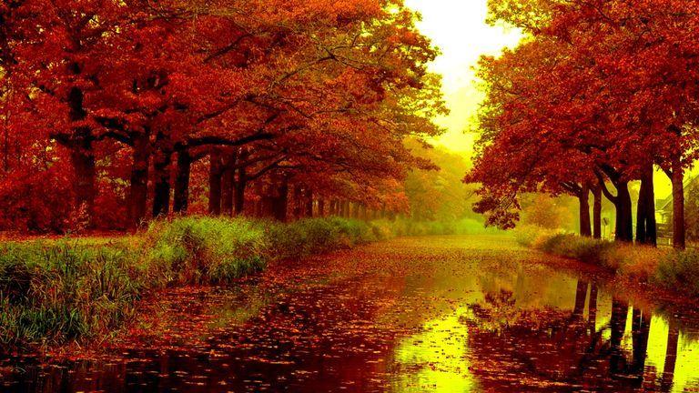41 Autumn Wallpapers That Will Take Your Breath Away Autumn Season Images Autumn Rain Rain Wallpapers