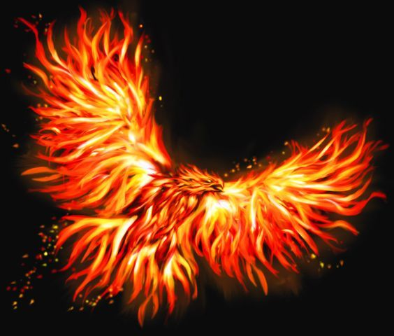 Phoenix by gwydion1982 on deviantART