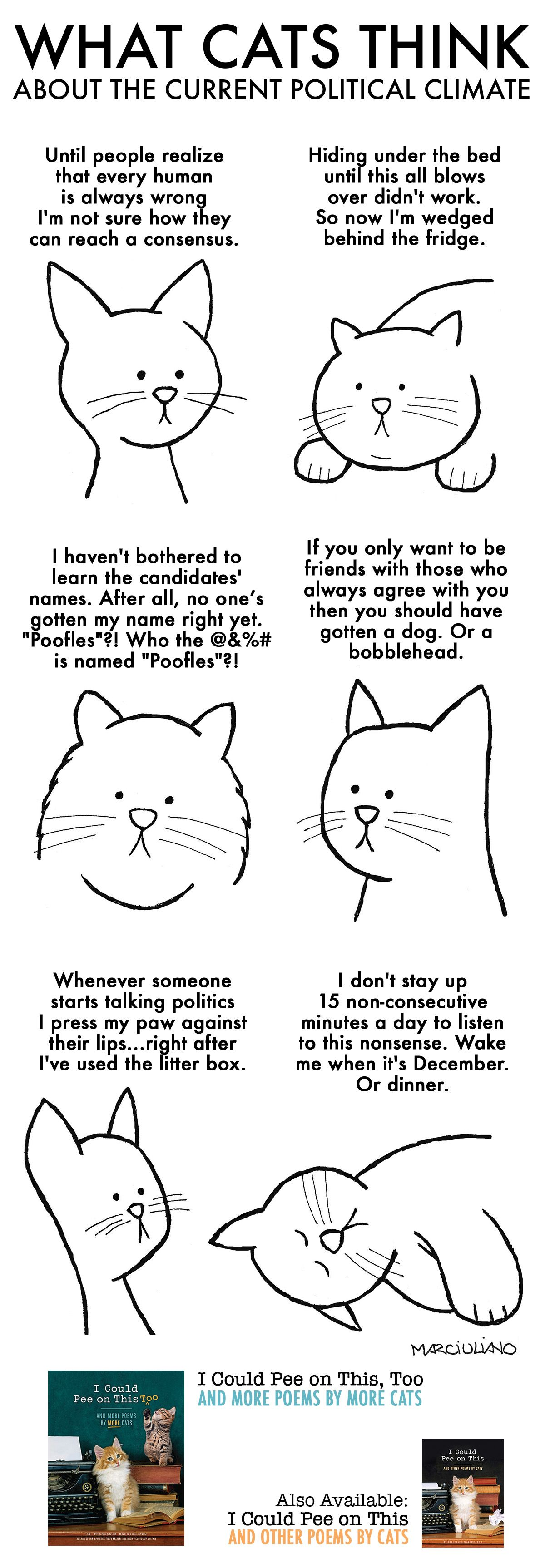 What Cats Think about the Current Political Climate