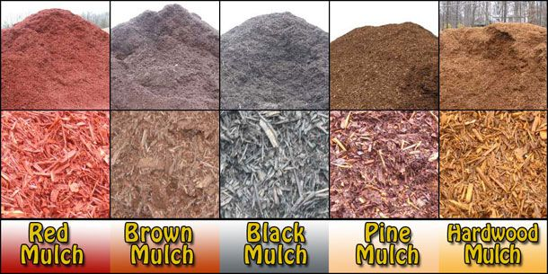 The Diffe Types Of Mulch That You Can Get