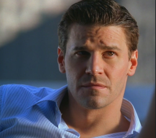 "faithinbonesffn: "" David Boreanaz """
