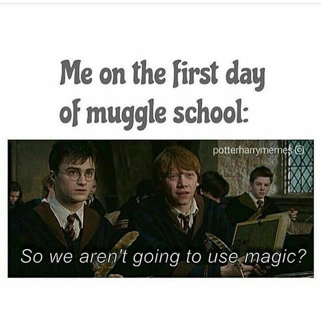 Pin By Stressed But Funny On Hilarious Memes Harry Potter Quotes Harry Potter Memes Harry Potter